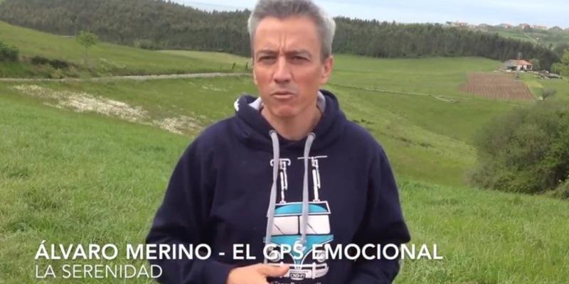 Merino_Serenidad