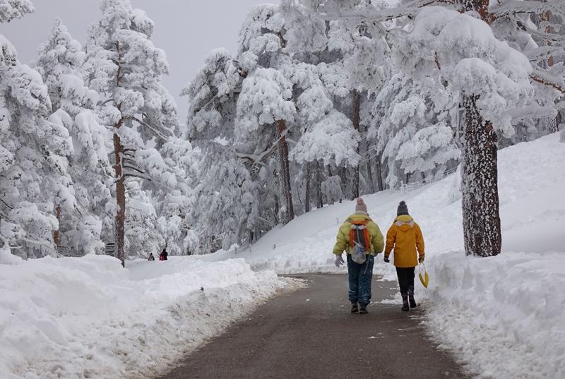 El Puerto de Navacerrada es foco de atracción para los amantes de la nieve.